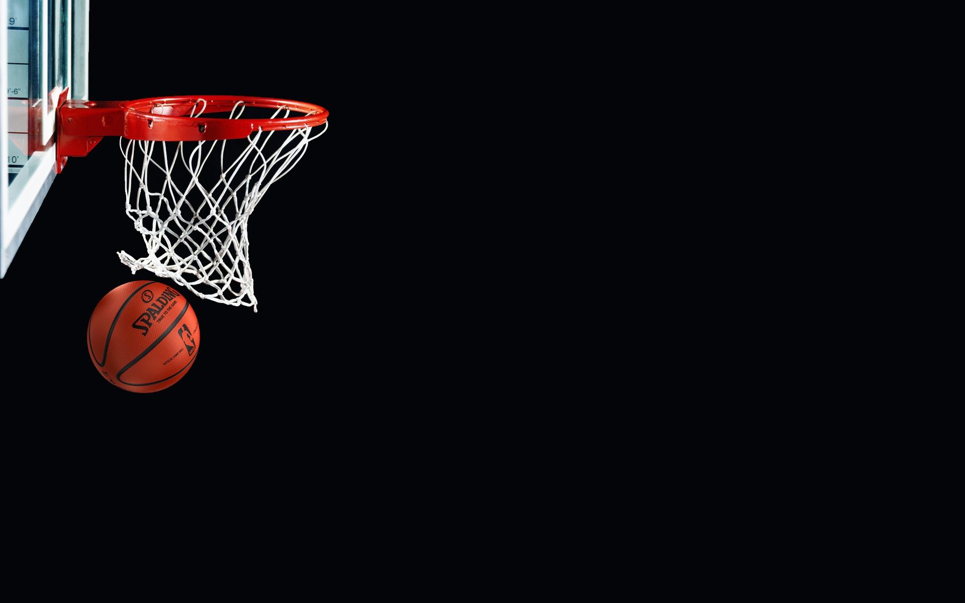 basket poviglio audax